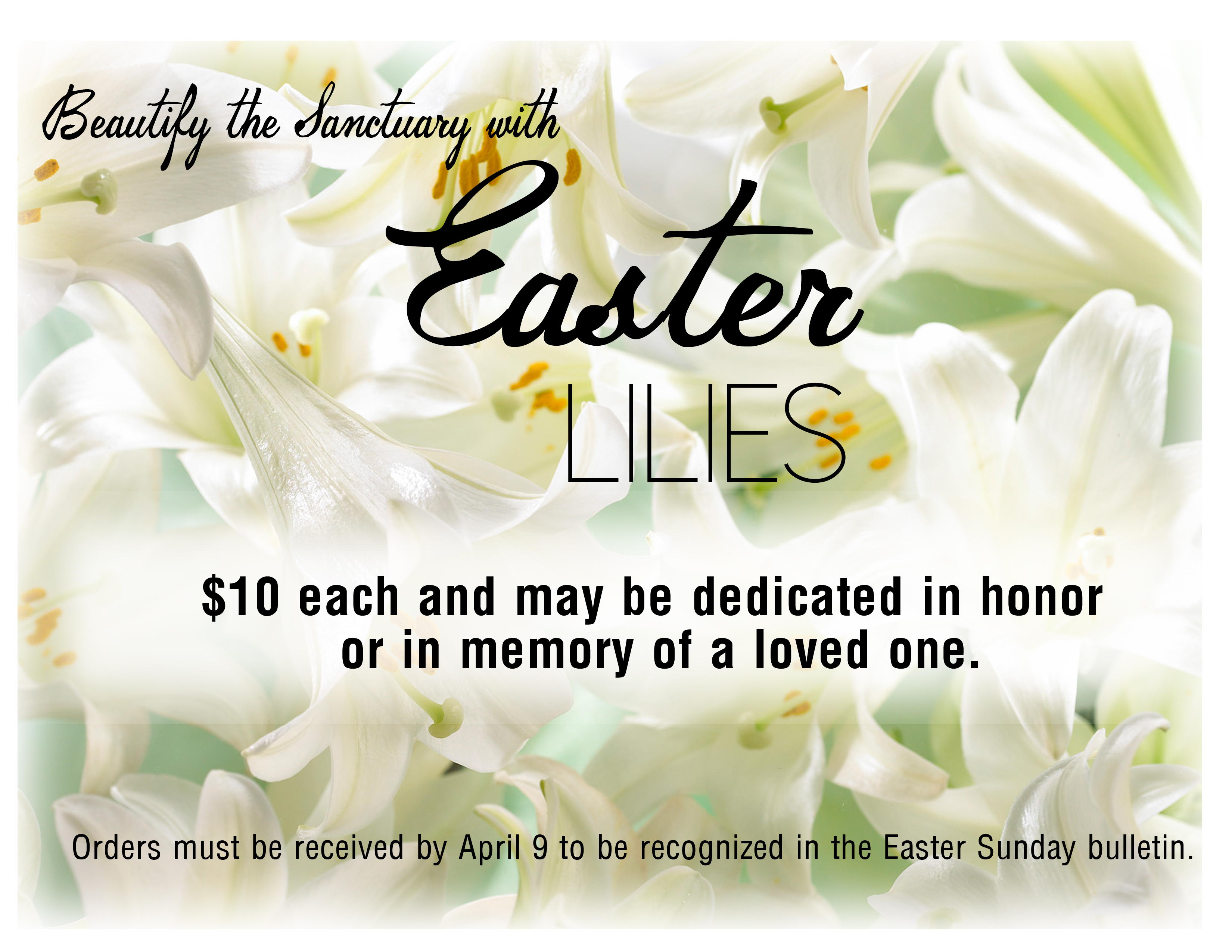 Easter Lilies order graphic